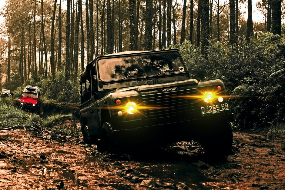 A car parked in a forest