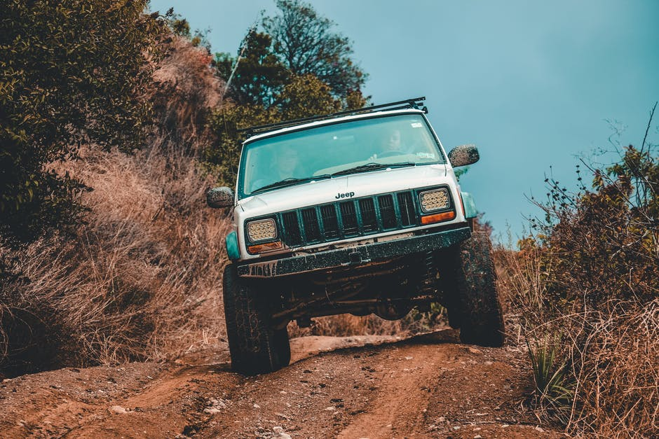 jeep driving over tree